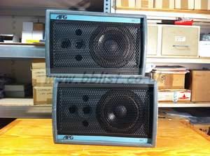 Loudspeakers APG MC1 F