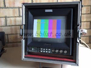 Ikegami TM10-17R 10' Monitor
