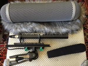 2 x Sennheiser mkh60 with Rycote windshield