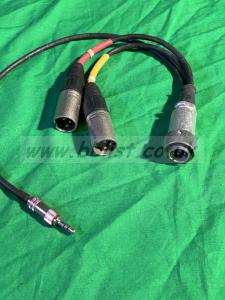 SQN 10 pin Male plug to 2 x XLR  & 3.5mm Plug