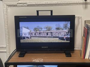 SONY PVM-A170 - Professional TRIMASTER